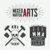 Set of vintage mixed martial arts logo, badges and emblems. Vector illustration — Stock Vector