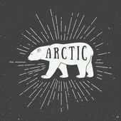 Vintage arctic white bear with slogan. — Stock Vector