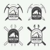 Vintage mountaineering and arctic expeditions logos, badges, emblem — Stock Vector