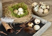 Easter background with a blackboard and quail eggs in a nest. — Stock Photo