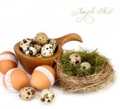 Easter eggs in a nest and a wooden bowl on a white background. Easter background. — Stock Photo