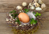 Easter eggs in a nest on a wooden background. Easter background. — Stock Photo