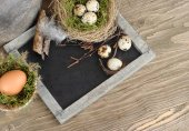 Easter eggs on a cretaceous board (blackboard) on wooden a rustic a background. Easter background. — Stock Photo