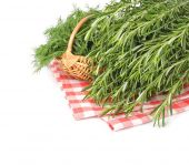 Fresh rosemary and fennel in a basket on a white background. — Stock Photo