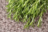 Fresh rosemary on a knitted background. — Stock Photo