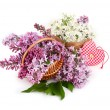 Violet and white lilac in a basket and textile checkered heart on a white background. — Stockfoto #73082579