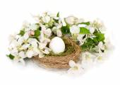 Easter white egg in a nest and white apple-tree flowers on a white background. Easter background. — Stockfoto