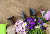 Tools for work in a garden and with houseplants on a wooden background. Top view. — Stock Photo