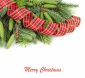 Branches of a Christmas tree with cones and a spiral checkered tape on a white background. A Christmas background with a place for the text. — Stock Photo
