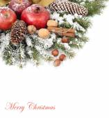Apples, pomegranates, cones and nuts on snow-covered branches on a white background. A Christmas background with a place for the text. — Stock Photo