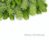 Fluffy branches of a Christmas tree on a white background. A Christmas background with a place for the text. Top view. — Stock Photo