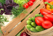 Fresh ripe vegetables in a wooden box. — Stock Photo