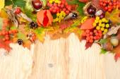 Autumn background with leaves, chestnuts and a mountain ash with a place for the text. Autumn composition on a wooden background. — Stock Photo