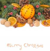 Dried oranges, cinnamon and nuts on branches of a Christmas tree on a white background. A Christmas background with a place for the text. — Stock Photo