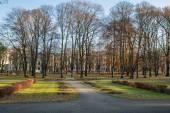 Park in Riga — Stock Photo