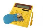 Calculator withcoins — Stock Photo