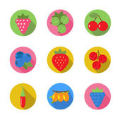 Set of fruit icons in flat design with long shadows — Stock Vector