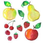 Fruit set — Stock Vector