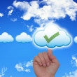 Female Hand Touching Cloud and Ticking Check Box — Stock Photo #62236133