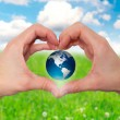Hands holding green globe with grassy background - Stock Image — Stock Photo #62867775