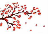 Vector illustration of blossom tree branch with red flowers on white background — Stock Vector