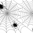 The vector illustration of web and spiders — Stock Vector #64389733