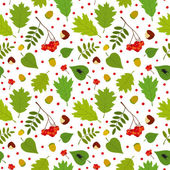 Forest seamless pattern with rowan berry, leaves, acorn, chestnut, beetle. Vector set. White background. — Stock Vector