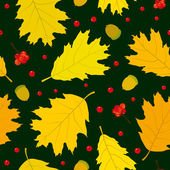 Autumn seamless pattern of Canadian oak's leaves, acorns and rowan berries. White background. — Stock Vector