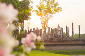 Buddha sculpture and temple ruins in Sukhothai historical park,  — Stock Photo