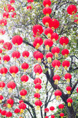 Red chinese lanterns — Stock Photo