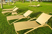 Bleach chairs under the palm tree viewing the sunset — Stock Photo