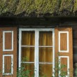 Old wooden house with wooden shutters and thatched roof. Rural buildings. Poland. — Stock Photo #61844393