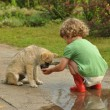 Boy, child in red rubber Wellingtons, talking with the puppy. Childhood in diapers. — Stock Photo #61844447