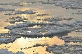 Ice flowing down the river. Sunrise in winter — Stock Photo