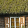 Old wooden house with wooden shutters and thatched roof. Rural buildings. Poland. — Stock Photo #62407195