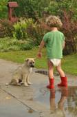 Boy, child in red rubber Wellingtons, talking with the puppy. Childhood in diapers. — Stock Photo