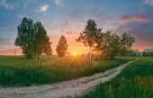 Sunset in the park — Stock Photo