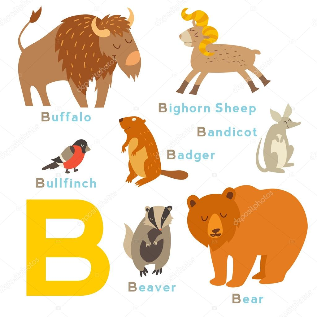 Pictures Of Animals That Start With The Letter J
