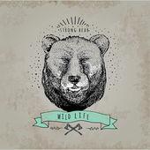 老式的熊徽标. — 图库矢量图片