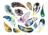 Watercolor feathers set — Stock Vector