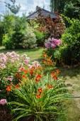 Vista giardino bella estate — Foto Stock