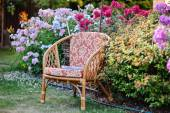 Chair in summer garden with colorful phlox flowers — Stock Photo