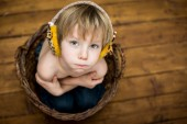 Boy in the hamper — Stock Photo