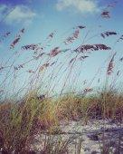 Inspirational beach scene — Stock Photo