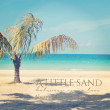 Beautiful instagram of lone palm tree on a tropical beach with — Stock Photo #60777189