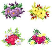 Flower bouquets set — Stock Vector