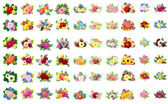 Set of color flowers — Stock Vector