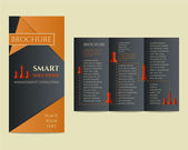 Business Brochure and flyer design template in polygonal style concerning to management, finance, consulting theme with infographic elements and business logo template. Unusual concept. Vector — Stock Vector