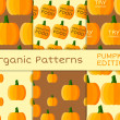 Organic seamless pattern collection. Fresh vegetables from the farmer. Bio and eco theme. Pumpkin. halloween. Vector — ストックベクタ #77319796