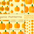 Organic seamless pattern collection. Fresh vegetables from the farmer. Bio and eco theme. Healthy food. Pumpkin. halloween. Vector — ストックベクタ #77319812
